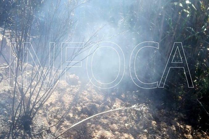 Extinguido el incendio que comenzó el viernes en un paraje de Mijas