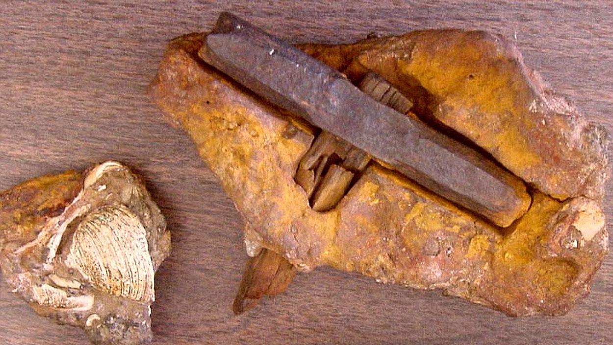 Arqueología imposible: objetos fosilizados