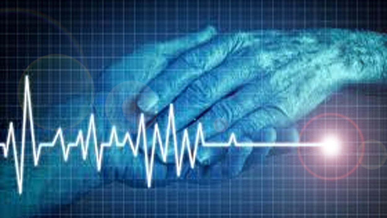 Preparación y especialización en cuidados paliativos contra la Ley de eutanasia